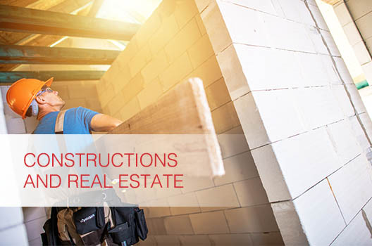 Real Estate and Constructions