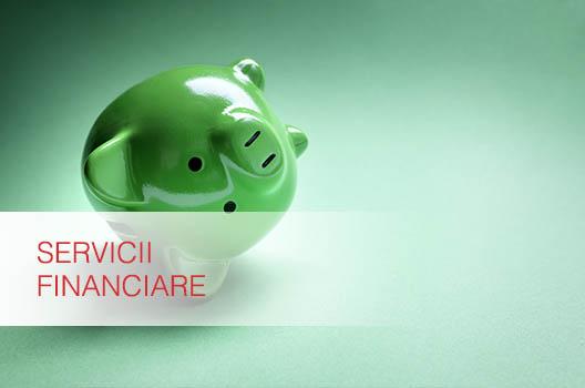Contabilitate Servicii  Financiare